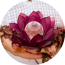 lotus_love